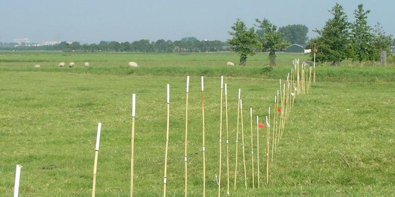 De hoogteverschillen in het landschap zoals die worden veroorzaakt door de kreekrug, hier geaccentueerd met stokken. Foto: www.zaansebodemschatten.nl