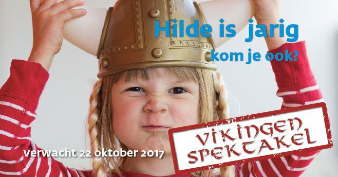 Huis Van Hilde Viert Verjaardag Met Vikingenspektakel Vereniging